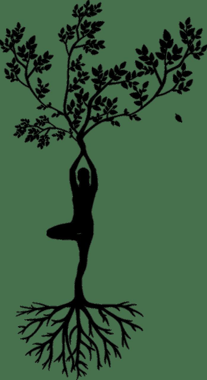 Ditt yogastudio i Haugesund